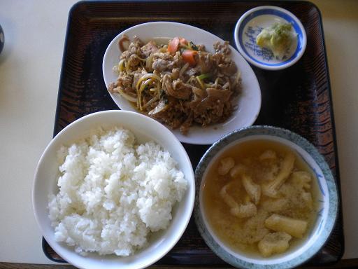 nagatsuma2.JPG
