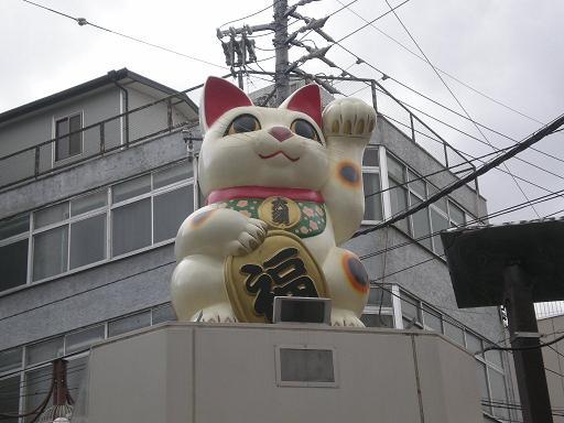 oosu-maneki.jpg