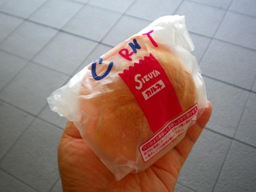 shizuya2.JPG